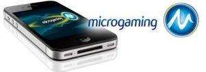 마이크로게이밍 Microgaming